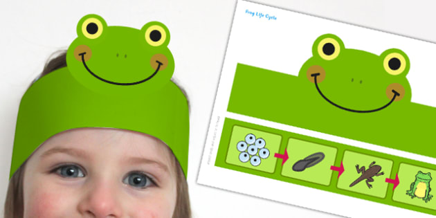 Frog Life Cycle Headband - frog, life cycle, headband, role-play