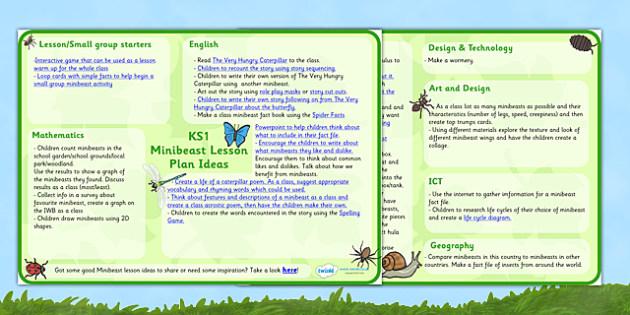 Minibeast Lesson Plan Ideas KS1 - minibeasts, minibeast lesson ideas, minibeast lesson plan, lesson plan, MPT, minibeast MPT, minibeast lesson planner