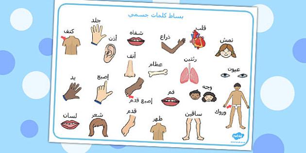 بساط كلمات عن جسمي - جسمي، كلمات عن الجسم، مفردات عن الجسم
