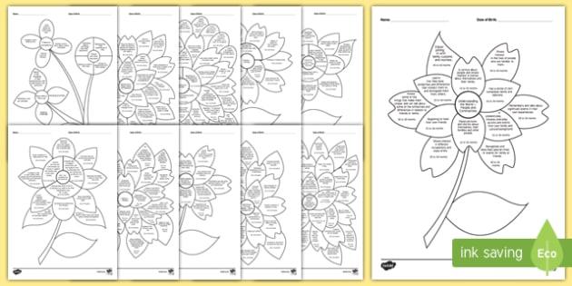 EYFS Nursery (FS1) Assessment Flowers