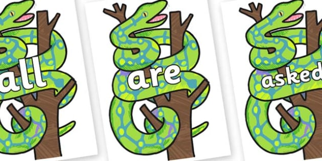 Tricky Words on Boa Constrictor to Support Teaching on The Bad Tempered Ladybird - Tricky words, DfES Letters and Sounds, Letters and sounds, display, words