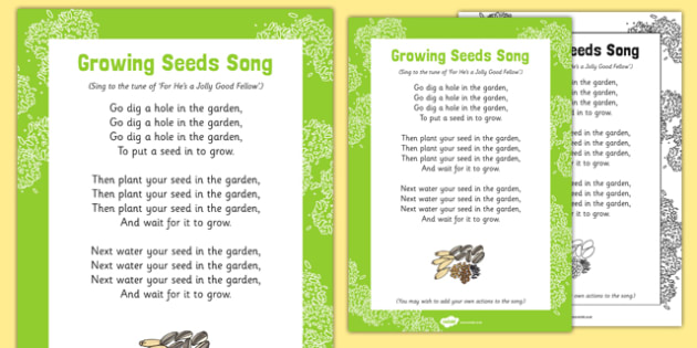 Growing Seeds Song - plant, seed, fruit, life cycle, tune, flower, growing, eyfs, early years, EAD