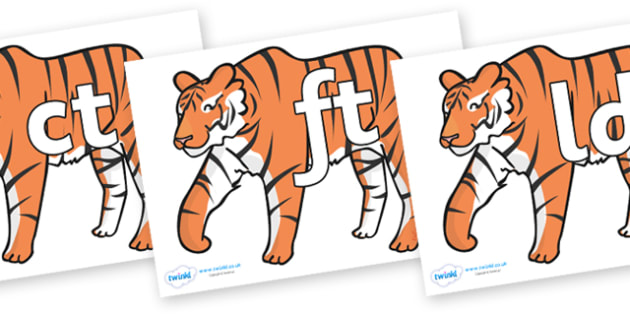 Final Letter Blends on Tigers - Final Letters, final letter, letter blend, letter blends, consonant, consonants, digraph, trigraph, literacy, alphabet, letters, foundation stage literacy