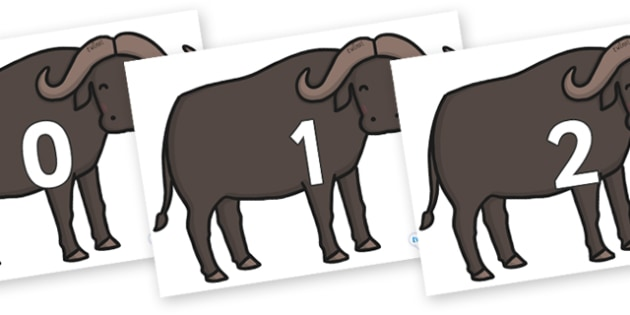 Numbers 0-100 on Buffalos - 0-100, foundation stage numeracy, Number recognition, Number flashcards, counting, number frieze, Display numbers, number posters