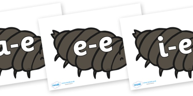 Modifying E Letters on Woodlice - Modifying E, letters, modify, Phase 5, Phase five, alternative spellings for phonemes, DfES letters and Sounds