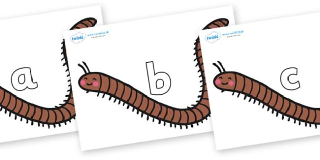 Phase 2 Phonemes on Millipedes - Phonemes, phoneme, Phase 2, Phase two, Foundation, Literacy, Letters and Sounds, DfES, display