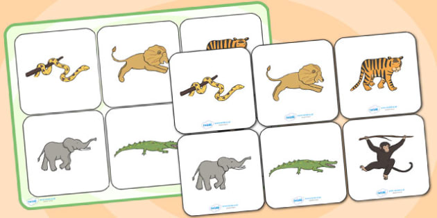 Jungle Animal Themed Matching Cards and Board - walking through the jungle matching activity, walking through the jungle image matching game, sen