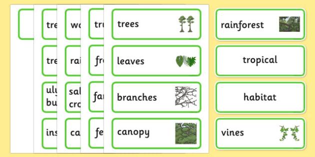 Australian Tropical Rainforest Habitat Word Cards - australia, Science, Year 1, Habitats, Australian Curriculum, Tropical, Rainforest, Living, Living Adventure, Good to Grow, Ready Set Grow, Life on Earth, Environment, Living Things, Animals, Plants,