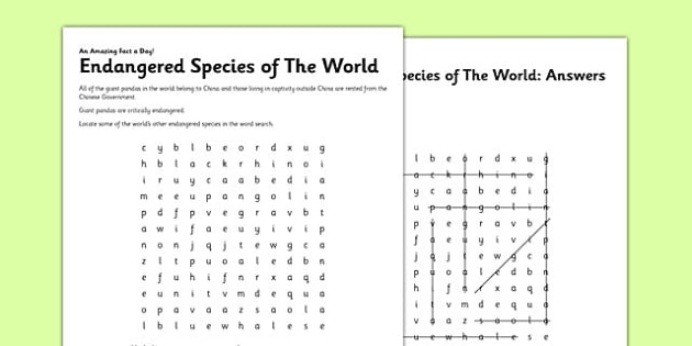 Endangered Species of the World Activity Sheet - species, endangered, critical, worksheet
