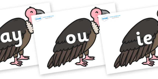 Phase 5 Phonemes on Vultures - Phonemes, phoneme, Phase 5, Phase five, Foundation, Literacy, Letters and Sounds, DfES, display