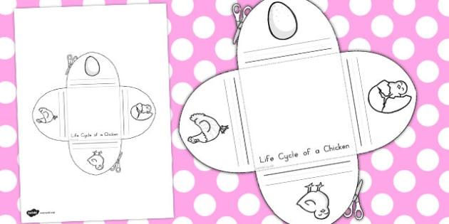 Chicken Life Cycle Interactive Visual Aid - australia, life cycle