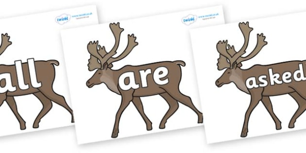 Tricky Words on Caribous - Tricky words, DfES Letters and Sounds, Letters and sounds, display, words