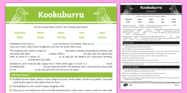 Australian Animals Years 3-6 Kookaburra Differentiated Cloze Passage Activity Sheet - australia, Australian Curriculum, birds, kookaburra, turtle, differentiated, cloze, fast finisher, information, reading, worksheet