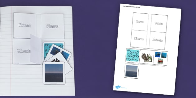 Living Things and their Habitats Ocean Flap Book - Ocean, Habitat