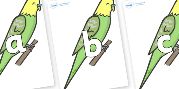 Phoneme Set on Budgies - Phoneme set, phonemes, phoneme, Letters and Sounds, DfES, display, Phase 1, Phase 2, Phase 3, Phase 5, Foundation, Literacy