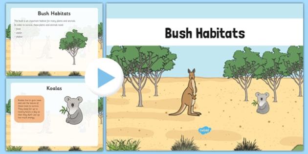 Bush Habitat PowerPoint - australia, Science, Year 1, Habitats, Australian Curriculum, Bush, Living, Living Adventure, Environment, Living Things, Animals, Plants, PowerPoint