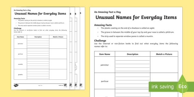 Unusual Names For Everyday Items Activity Sheet