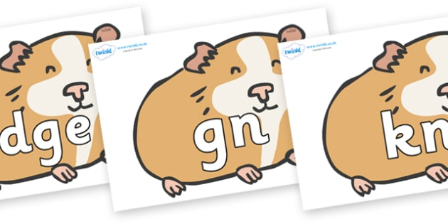 Silent Letters on Guinea Pigs - Silent Letters, silent letter, letter blend, consonant, consonants, digraph, trigraph, A-Z letters, literacy, alphabet, letters, alternative sounds
