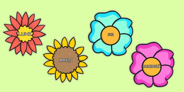 Flori cu zilele saptamanii - decorul carendarul clasei, saptamana
