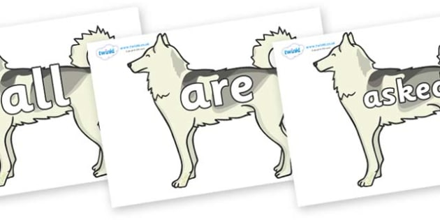 Tricky Words on Huskies - Tricky words, DfES Letters and Sounds, Letters and sounds, display, words