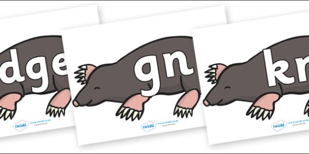Silent Letters on Moles - Silent Letters, silent letter, letter blend, consonant, consonants, digraph, trigraph, A-Z letters, literacy, alphabet, letters, alternative sounds