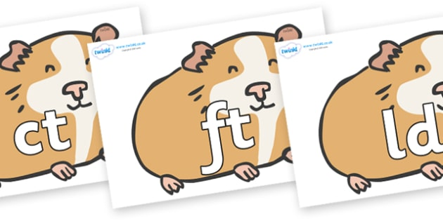 Final Letter Blends on Guinea Pigs - Final Letters, final letter, letter blend, letter blends, consonant, consonants, digraph, trigraph, literacy, alphabet, letters, foundation stage literacy