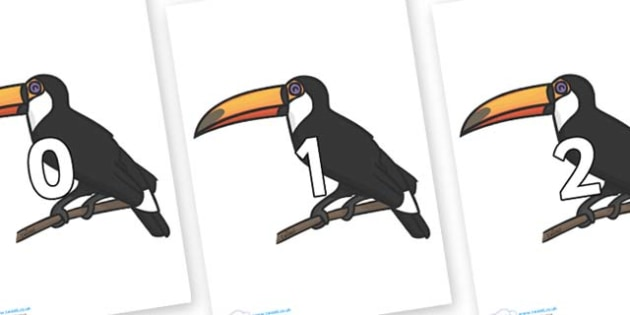 Numbers 0-31 on Toucan - 0-31, foundation stage numeracy, Number recognition, Number flashcards, counting, number frieze, Display numbers, number posters