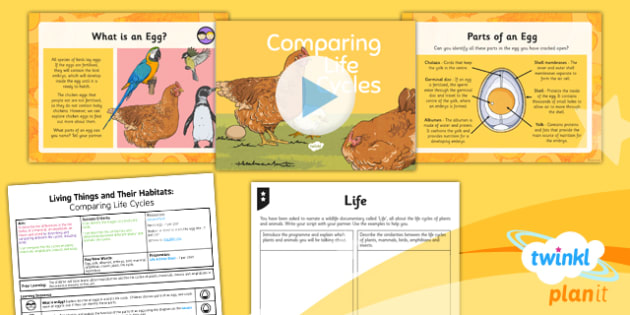 PlanIt - Science Year 5 - Living Things and Their Habitats Lesson 6: Comparing Life Cycles Lesson Pack - bird, egg, life cycle