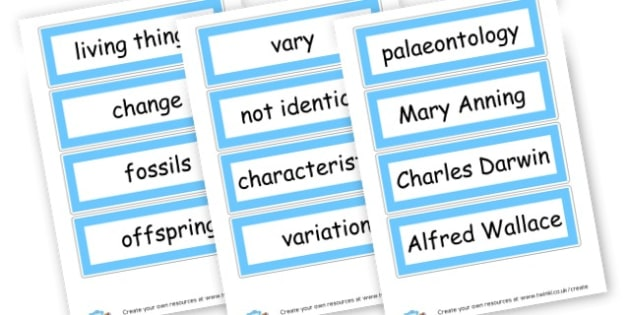 Evolution Words - KS2 Science Life Processes and Living Things, Worksheets, KS2