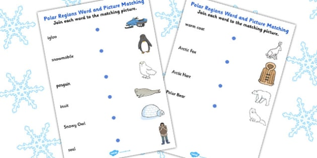 Polar Regions Picture Matching Activity Sheet - worksheets, match