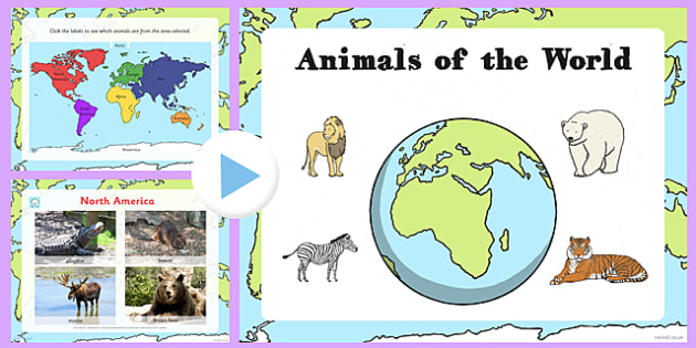 Animals From Around The World PowerPoint-animals from around the world, powerpoint, animals powerpoint, animals, species, information powerpoint