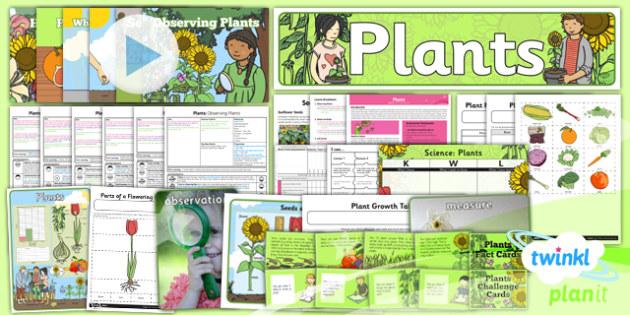 PlanIt - Science Year 2 - Plants Unit Pack - planit, unit, pack