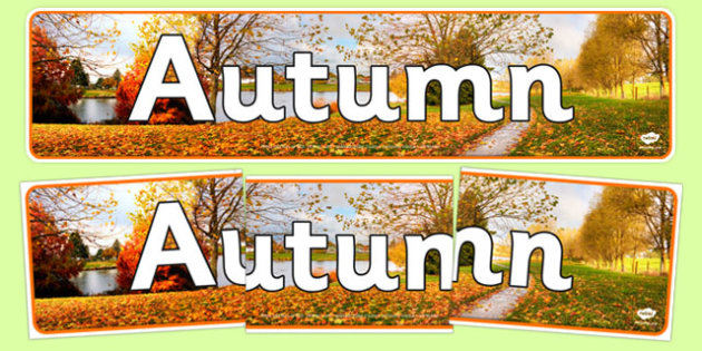 Autumn Photo Display Banner - nz, new zealand, autumn, photo display banner, photo banner, display banner, banner,  banner for display, display photo, display, picture, photo