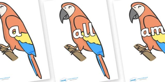 Foundation Stage 2 Keywords on Parrots - FS2, CLL, keywords, Communication language and literacy,  Display, Key words, high frequency words, foundation stage literacy, DfES Letters and Sounds, Letters and Sounds, spelling