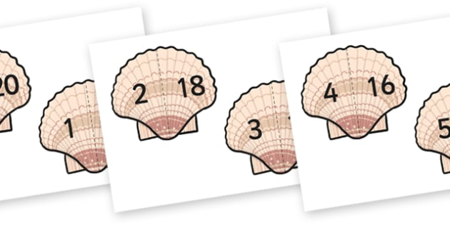 Shell Number Bonds 0-20 (Under the Sea) - shell number bonds, shell number bonds to 20, number bonds on shells, seaside number bonds, under the sea number bonds, numeracy