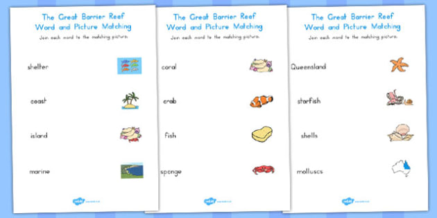 Great Barrier Reef Word Picture Matching Worksheet - australia