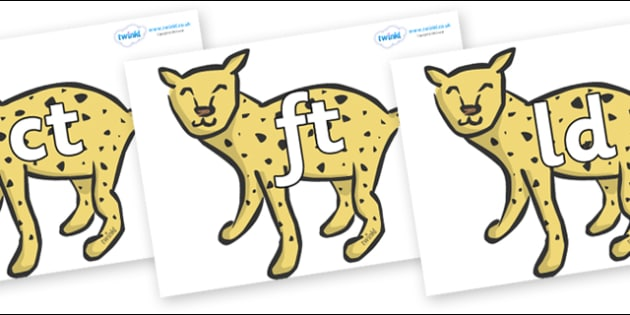 Final Letter Blends on Cheetahs - Final Letters, final letter, letter blend, letter blends, consonant, consonants, digraph, trigraph, literacy, alphabet, letters, foundation stage literacy