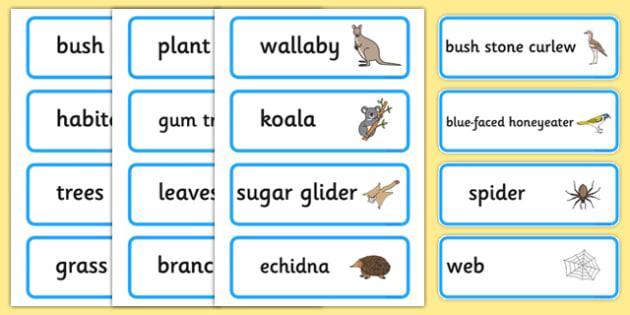 Bush Habitat Word Cards - australia, Science, Year 1, Habitats, Australian Curriculum, Bush, Living, Living Adventure, Environment, Living Things, Animals, Plants, Word Cards