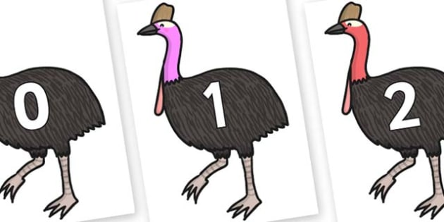 Numbers 0-50 on Cassowary - 0-50, foundation stage numeracy, Number recognition, Number flashcards, counting, number frieze, Display numbers, number posters