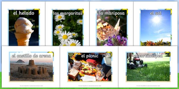 Summer Display Photos