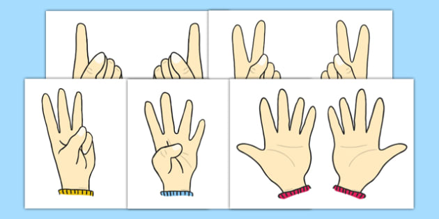 European Counting Hands Doubles - european counting, count, hands, doubles