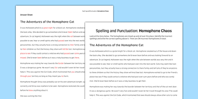 Spelling and Punctuation Homophone Chaos Activity Sheet - spelling, punctuation, homophone, worksheet