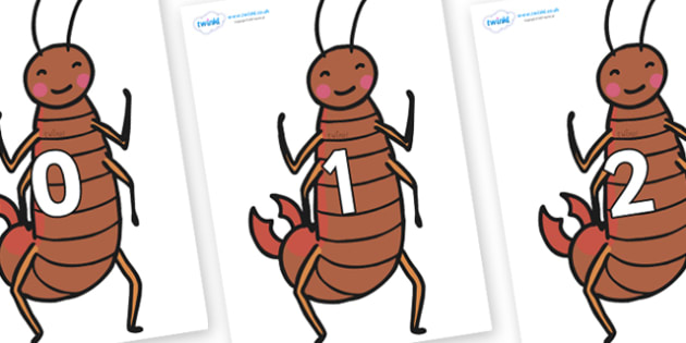 Numbers 0-50 on Earwigs - 0-50, foundation stage numeracy, Number recognition, Number flashcards, counting, number frieze, Display numbers, number posters