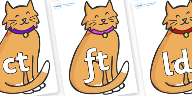 Final Letter Blends on Pussy Cats - Final Letters, final letter, letter blend, letter blends, consonant, consonants, digraph, trigraph, literacy, alphabet, letters, foundation stage literacy