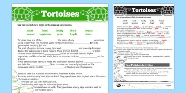 Australian Animals Years 3-6 Tortoise Differentiated Cloze Passage Activity Sheet - australia, Australian Curriculum, animals, reptiles, tortoise, differentiated, cloze, fast finisher, information, reading, worksheet