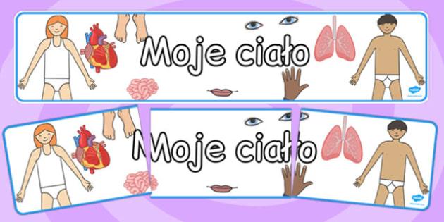 Banner na gazetkę scienną Moje cialo po polsku , Polish