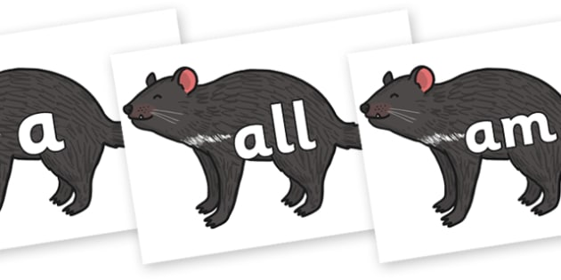 Foundation Stage 2 Keywords on Tasmanian Devil - FS2, CLL, keywords, Communication language and literacy,  Display, Key words, high frequency words, foundation stage literacy, DfES Letters and Sounds, Letters and Sounds, spelling