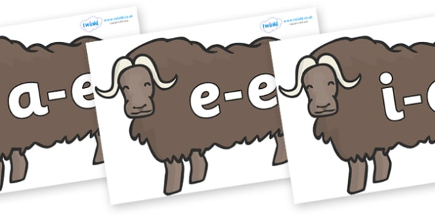 Modifying E Letters on Ox - Modifying E, letters, modify, Phase 5, Phase five, alternative spellings for phonemes, DfES letters and Sounds
