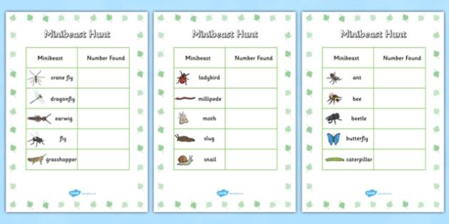 Minibeast Hunt Tally Sheet - minibeast hunt, minibeasts, minibeast hunt sheet, minibeast hunt tally, minibeast theme hunt, tally sheet for minibeast hunt