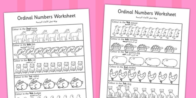 Ordinal Numbers Worksheet Arabic Translation - arabic, ordinal numbers